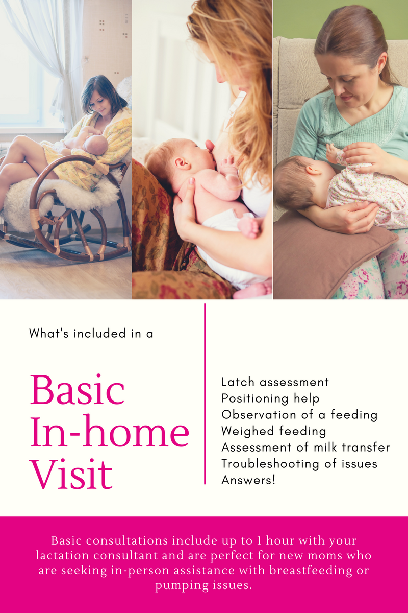 In-Home Lactation Visit Breastfeeding Support Orlando FL